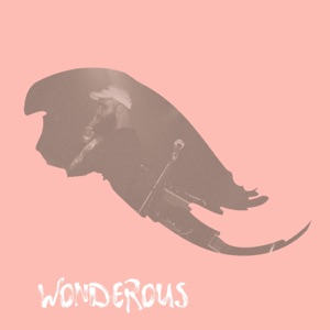Blake Rhodes (Mr Rhodes) - Wonderous (Single)